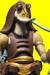 TLC - 07 - Gungan Warrior